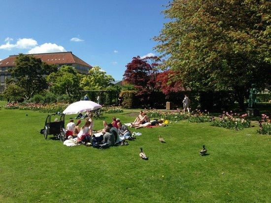 Hotel Sct. Thomas : Frederiksberg Alle Botanic Garden