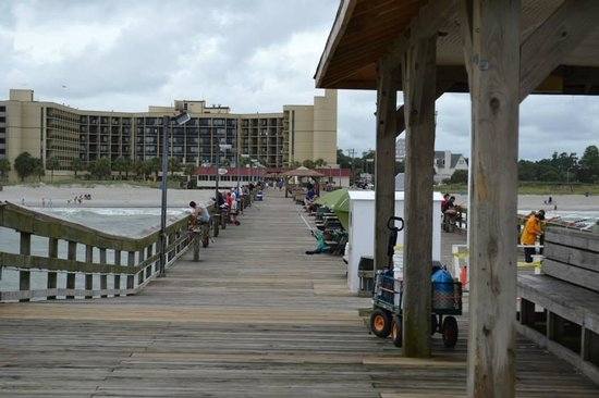 DoubleTree Resort by Hilton Myrtle Beach Oceanfront: looking from Springmaid Pier back toward our Resort building