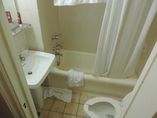 Hotel Edison Times Square : La vraie salle de bain, pas la photo pub disponible !!