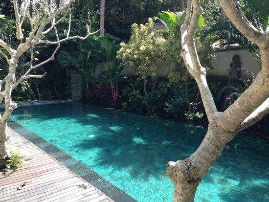 Puri Sunia Resort: Piscine