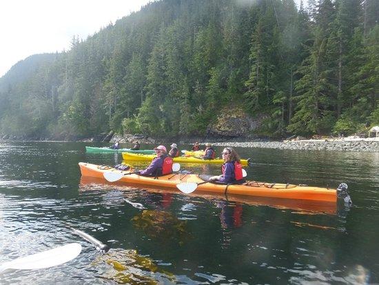 Wildcoast Adventures - Day Tours: Kayaks