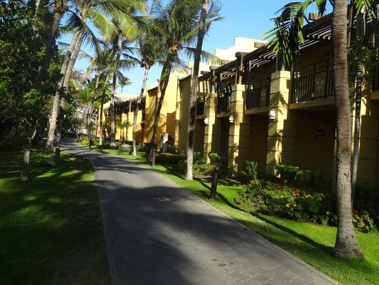 Tamarijn Aruba All Inclusive: the backyard of the rooms