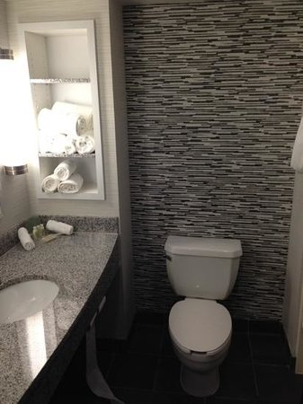 Beautiful Bathrooms 2bed 2 Bath Suite Picture Of Holiday Inn Hotel - Beautiful-bathrooms-2