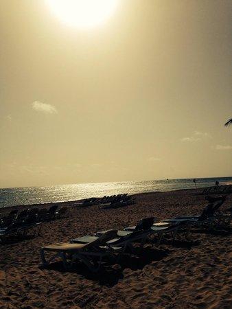 Dreams Punta Cana Resort & Spa : The view