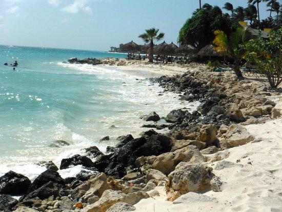 Tamarijn Aruba All Inclusive: some areas of the beach at Tamarijn are very rocky