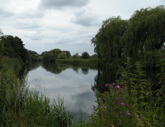 Hurst End Bed & Breakfast: River Avon Fordingbridge
