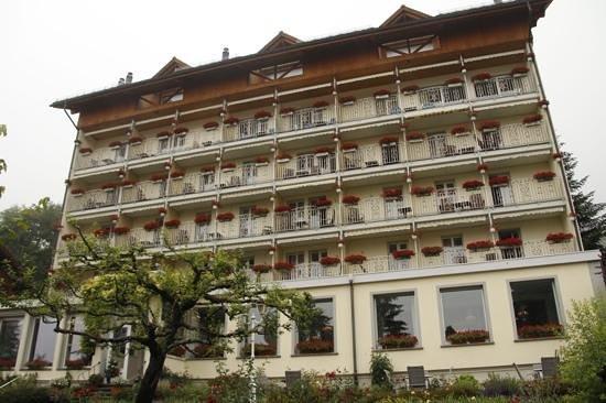 Hotel Wengener Hof : the hotel