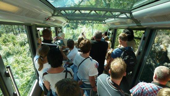 Mount Floyen and the Funicular (Floibanen): In der Bahn