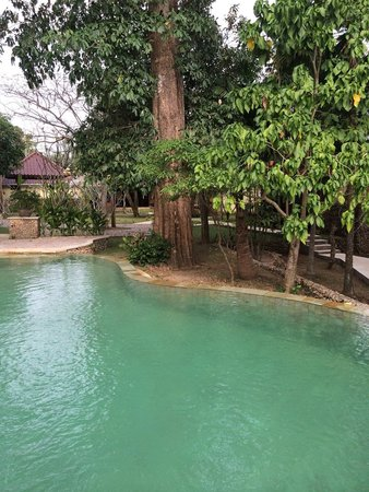Exclusive Bali Bungalows: Piscine