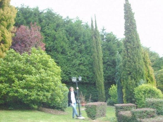 Urrezko Ametsa: Jardin