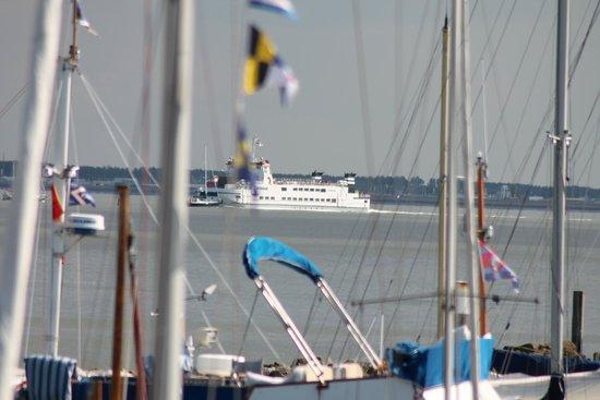 Marina : uitzicht vanaf de jachthaven