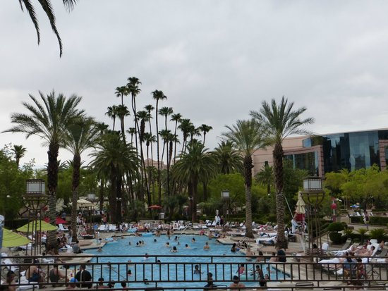 MGM Grand Hotel and Casino : Pool