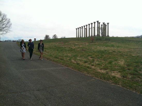 U.S. National Arboretum: Capitol Columns