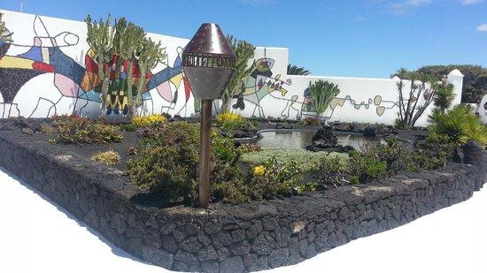 Fundación Cesar Manrique : Fantastic garden