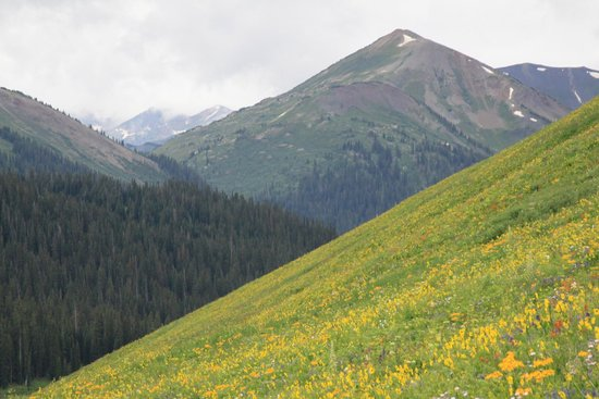 Paradise Cafe: Crested Butte in July is magnificent!
