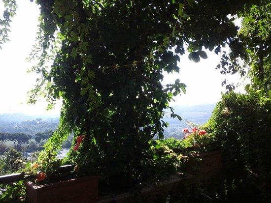 Albergo Il Marzocco : vista dalla terrazza della camera