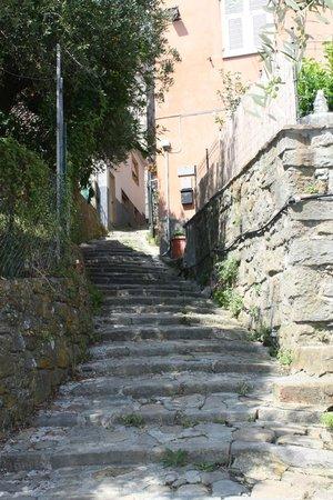 Il Carugio: scalinata per Manarola
