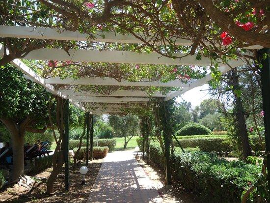 Hasdrubal Thalassa Hotel & Spa Port El Kantaoui: 2