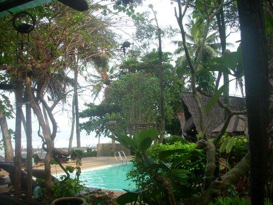 Banpu Koh Chang Resort: вид из кафе