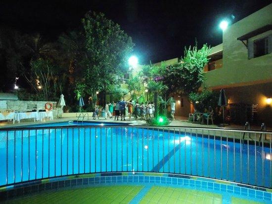 Latania: The pool area