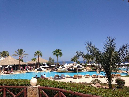 Hilton Sharm Waterfalls Resort: Paradise