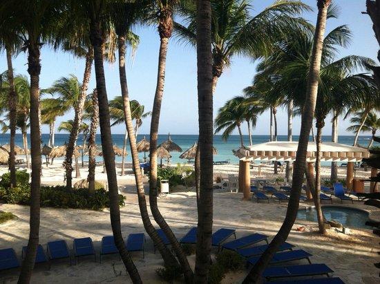 Divi Aruba Phoenix Beach Resort: Our view just steps from the beach