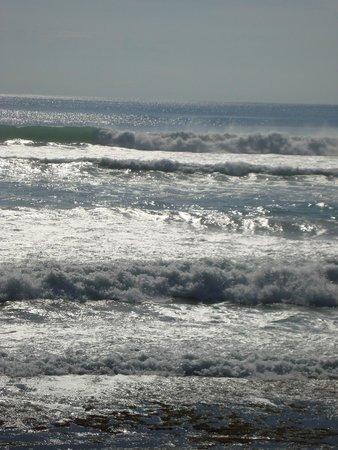 The Oasis Lagoon Sanur: Индийский океан