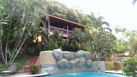 Hotel El Jardin: Poolaussicht