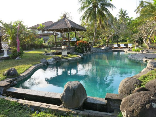 Abalone Resort: Pool  is nice - but ants are annoying