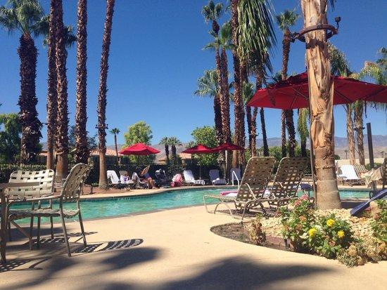 JW Marriott Desert Springs Resort & Spa: Refreshing Pool