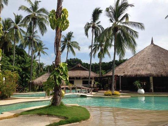 Pulchra: プールとレストラン