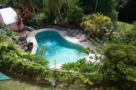 St Helier Bed & Breakfast : Pool view from the Garden Room