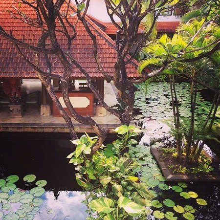 Bali Rani Hotel: This was the view from my room
