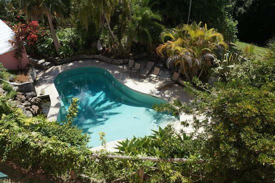 St Helier Bed & Breakfast : The pool to die for!