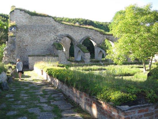 Alvastra Klosterruin : till höger munkarnas örtagård