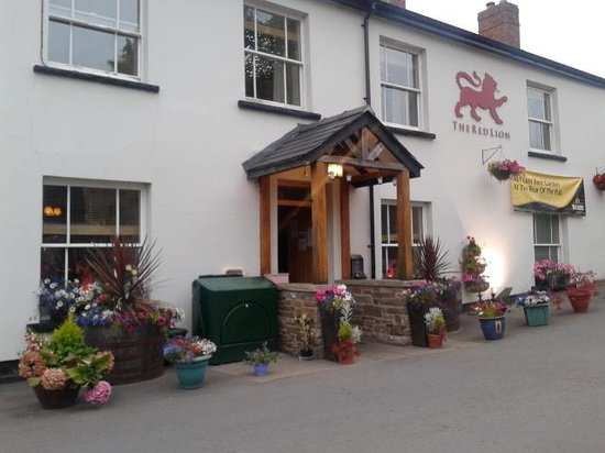 The Red Lion, Llangorse: delightful place amazing space to feel relaxed...beer garden parking and a beautifully finished