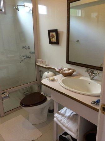 Te Aroha Dhanachuli: Bathroom