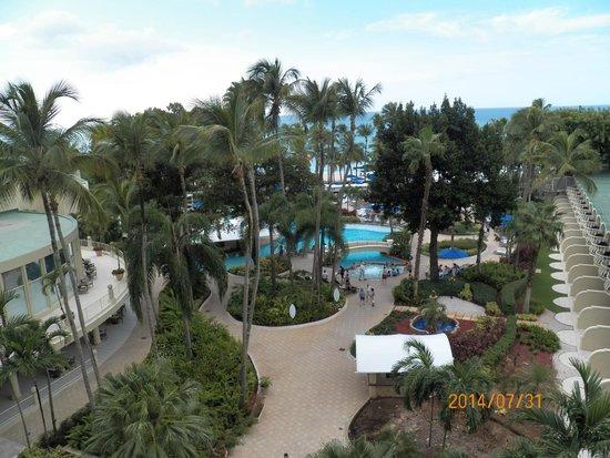 InterContinental San Juan: Gorgeous View