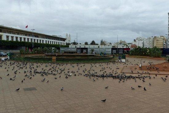 Square of Mohammed V : Pigeons on Mohammed V Square