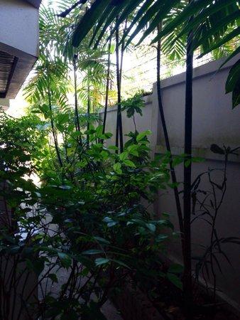 Ao-Nang Sunset Hotel : Вид из номера на первом этаже