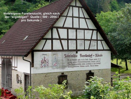 Hotel Restaurant Forellenhof Rössle: Gebäude auf der hoteleigenen Forellenzucht-Anlage