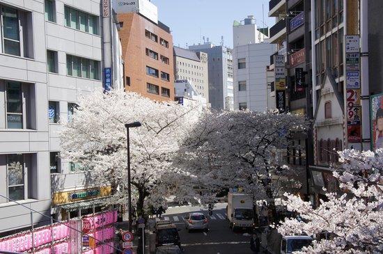 Cerulean Tower Tokyu Hotel : Sakura behind hotel