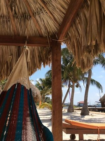 Ramon's Village Resort : beach hammocks