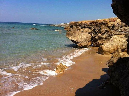 Capital Coast Resort & Spa: пляж отеля