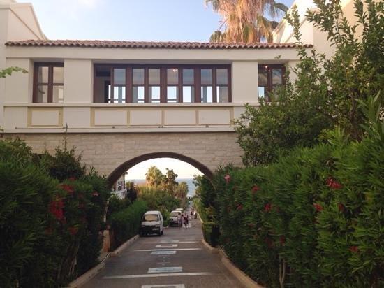Aldemar Royal Mare Thalasso Resort : территория отеля