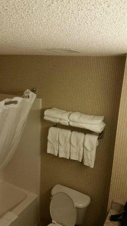 Country Inn & Suites By Carlson, Camp Springs (Andrews Air Force Base): bathroom