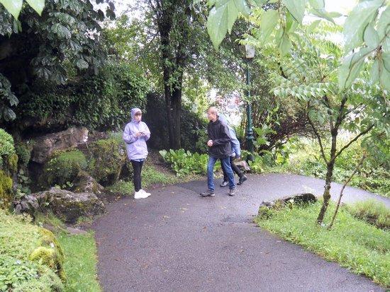 Jardin botanique Alpin de la Jaysinia : Plants!