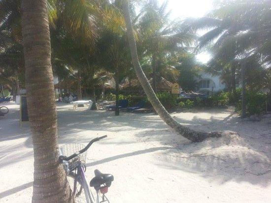 Caribbean Villas Hotel: beach