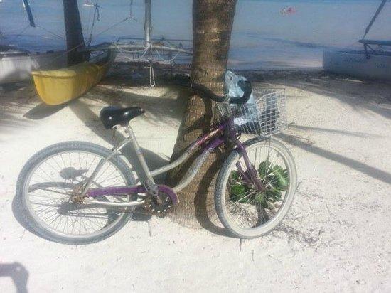 Caribbean Villas Hotel: my transportation