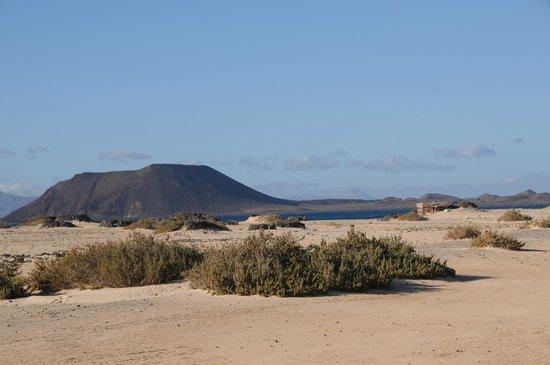 Corralejo Dunes: la plage face à Los Lobos